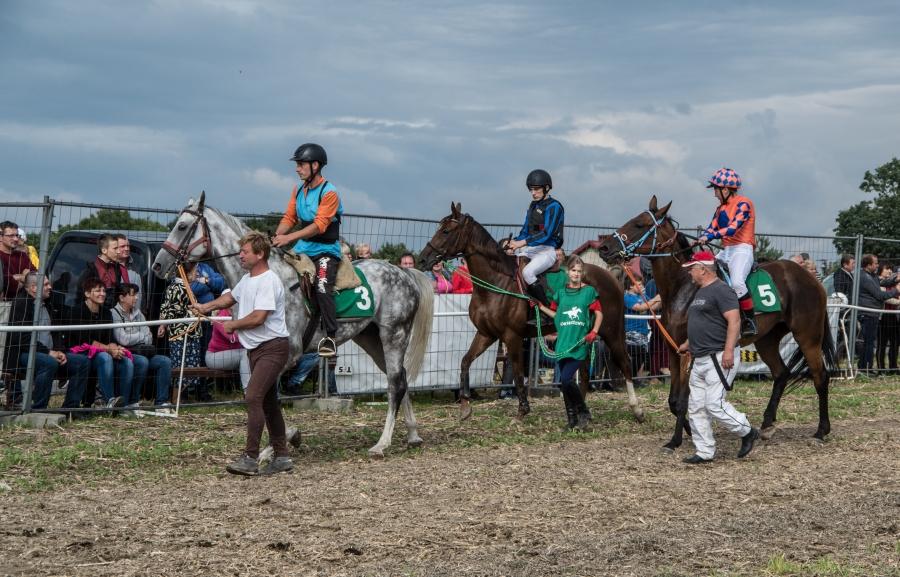 Zapraszamy na finał wyścigów konnych na ściernisku